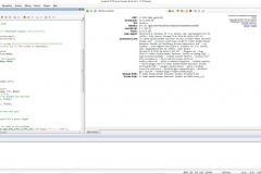 Main window XWeb Human Emulator Studio based on Chromium with open CEF settings